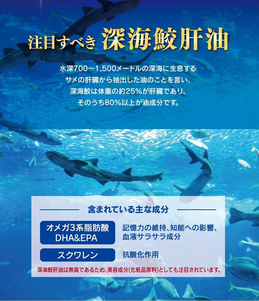 注目すべき深海鮫肝油
